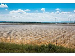 Один из крупнейших тепличных комплексов Северного Кавказа получит 75 МВт мощности