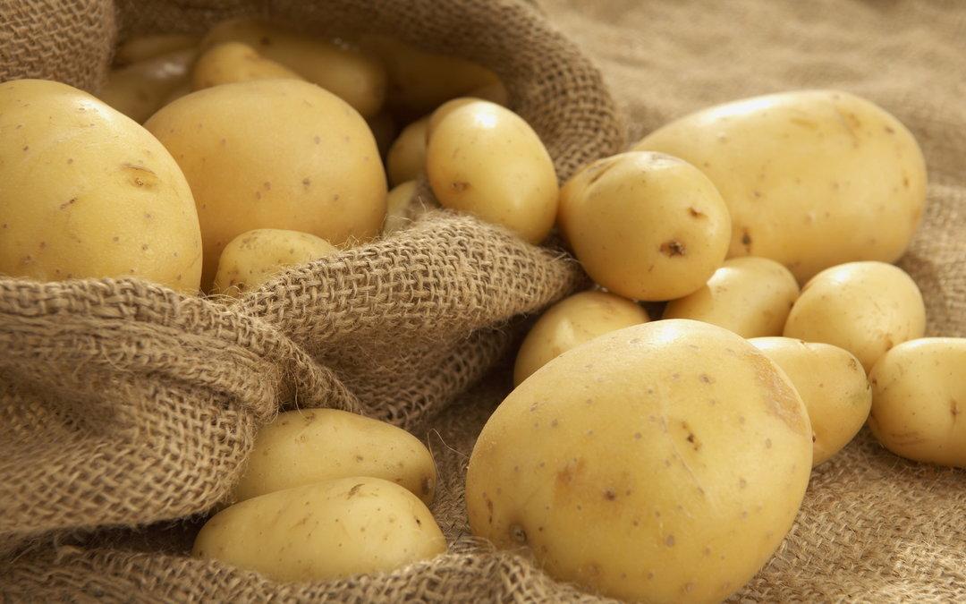Украина увеличила экспорт картошки практически в 3 раза