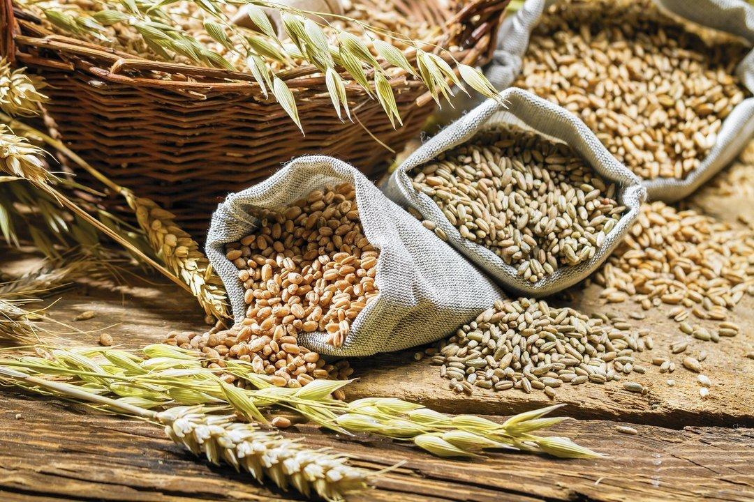 В Украине падает доходность выращивания зерна и овощей