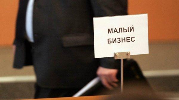 Владимир Ефимов рассказал о том, что в Москве становится все больше ИП