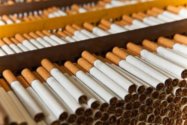 Оценены масштабы рынка нелегальных сигарет в России