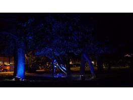 IntiLED стал спонсором международного фестиваля света и светового искусства Tartu Valgus / Tartu in Light